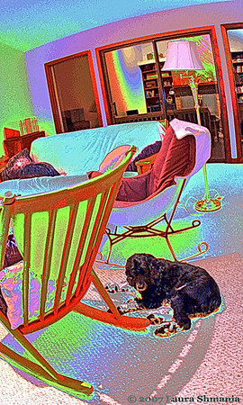 "1-17-08-- thursday<br /> it's a dog's life #14<br /> premium post processing of a puppy photo<br /> <br /> <br /> ""creativity is allowing yourself to make mistakes.  <br /> art is knowing which ones to keep.""<br /> <br /> -- scott adams"