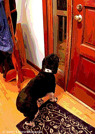 "1-9-08-- Wednesday<br /> it's a dog's life #8<br /> <br /> ""a door is what a dog is perpetually on the wrong side of.""<br /> <br /> -- ogden nash"