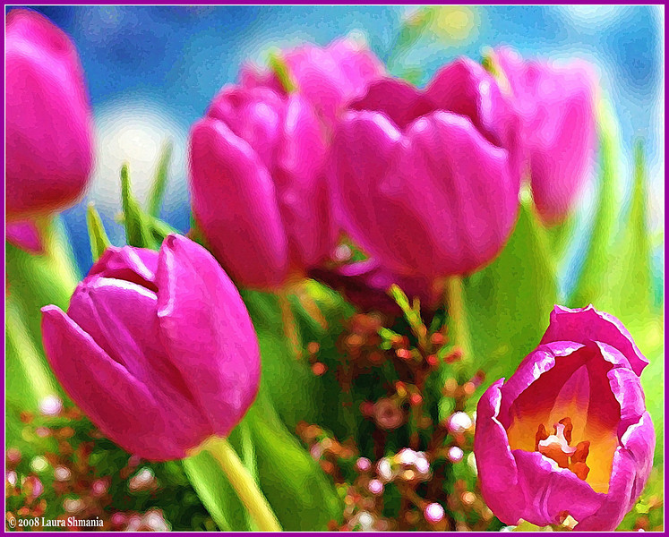 """3-1-09-- sunday<br /> the healing power of flowers<br /> <br /> <br /> <br /> """"I perhaps owe having become a painter to flowers.""""<br /> <br /> -- claude monet"""