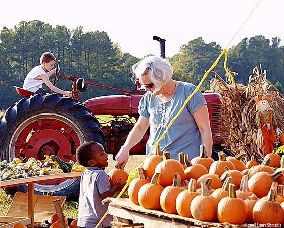 """10-16-08-- thursday<br /> at the pumpkin patch...<br /> <br /> <br /> """"to know someone with whom you can feel there is understanding in spite of distances or thoughts unexpressed...that can make this life a garden.""""<br /> <br /> -- goethe"""
