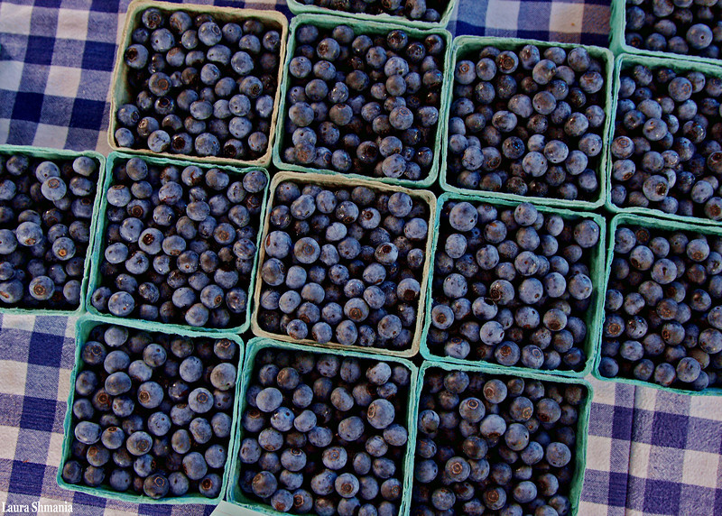 8-10-09-- monday<br /> blueberries!