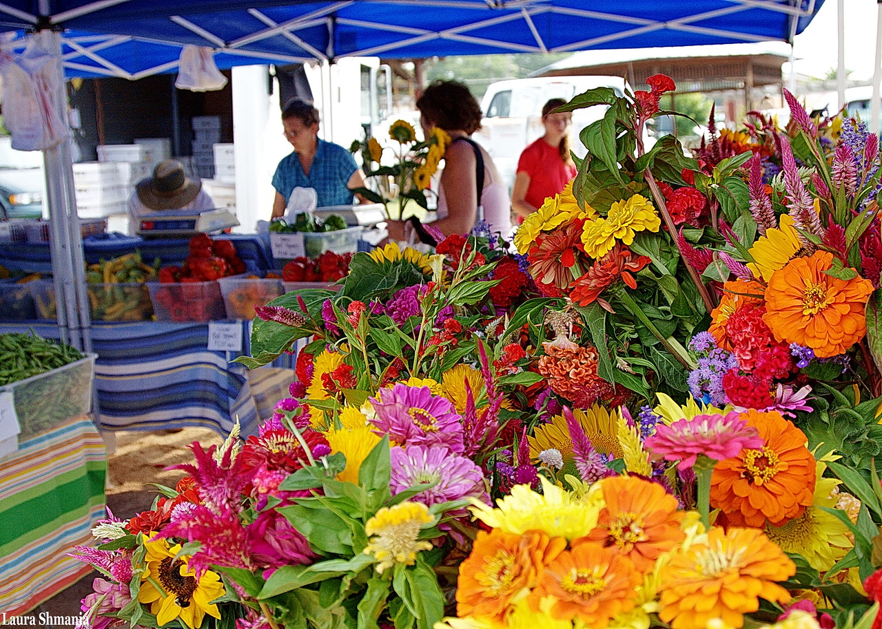 8-11-09-- tuesday<br /> farmers' market- flower/vegetable stand
