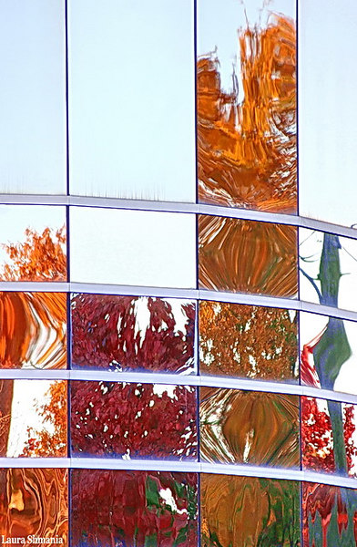 "11-3-06-- Friday<br /> reflections of autumn colors in glass wall of downtown building<br /> <br /> <br /> <br /> ""live in the moment and make it so beautiful <br /> that it will be worth remembering!""<br /> <br /> -- crosby"