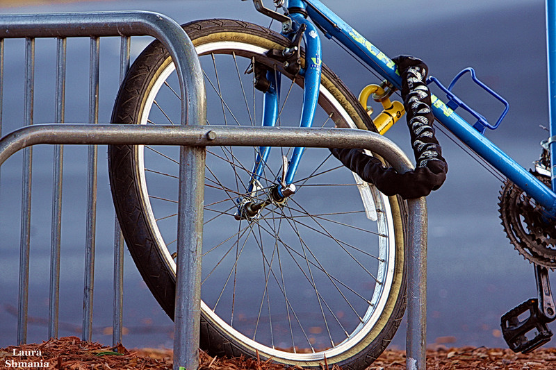 """10-9-07-- Tuesday<br /> <br /> """"think of bicycles as rideable art that can just about save the world.""""<br /> <br /> -- grant petersen"""