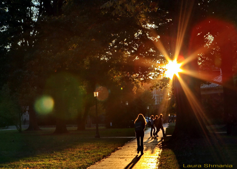"""11-8-07-- Thursday<br /> sunset on campus<br /> <br /> """"I cannot endure to waste anything as precious as autumn sunshine by staying in the house. so I spend almost all the daylight hours in the open air.""""<br /> <br /> -- nathaniel hawthorne"""