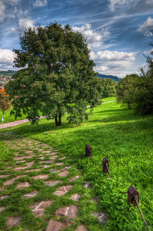 Devin Tree  A simple photo today. This one was taken at the Devin Castle near Bratislava. As the castle was behind me, you can't really see it :). But still, I really liked the sky, the tree and the path, so I still like this shot :)  HDR from three shtos, taken with Canon 450D with Sigma 10-20mm lens, handheld.