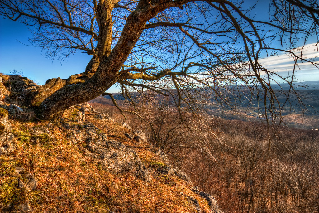 Don't fall down  I took this photo near the Pajstun castle ruins. This is a very beautiful place and a quite dangerous one. The hills here are quite steep and you really have to watch your step.  HDR from three shots, taken with Canon 450D with Sigma 10-20mm lens, from a tripod.