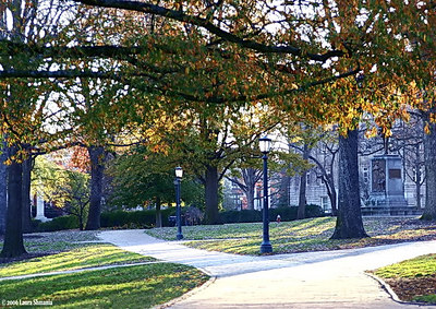The UNC campus greens are adjacent  to the town's historic districts  and 100 Block of East Franklin Street.