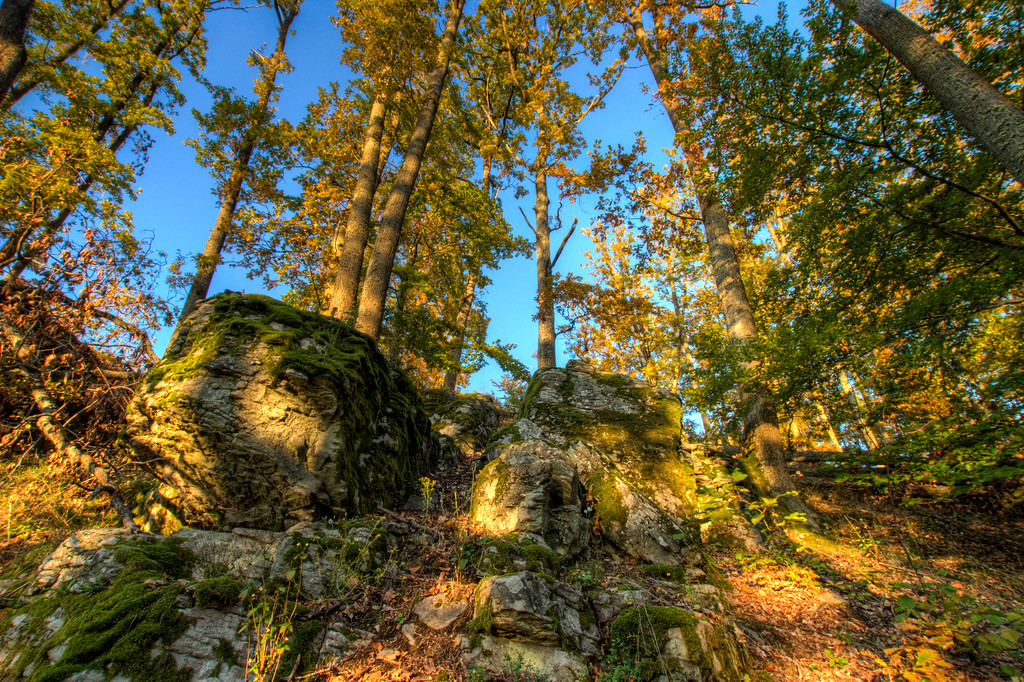 Rocky WoodsI really like how this one came out.. This photo was taken at the Stary Haj nature reserve in central Slovakia. It was taken during sunset which gave it this really nice shadows and colors.HDR from three shots, taken with Canon 450D with Sigma 10-20mm lens, from a tripod.