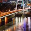 SNP bridge vertorama