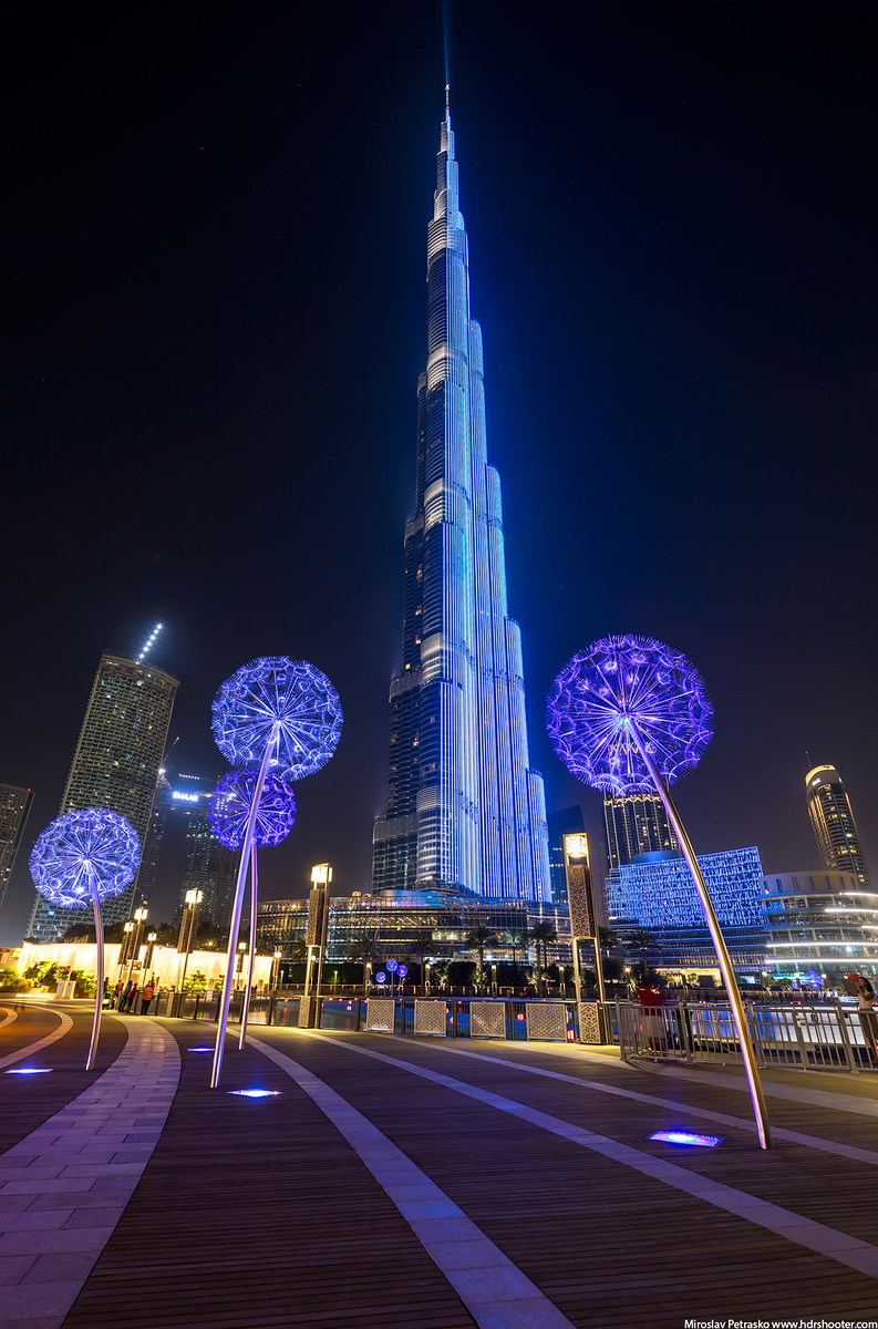 Even more dandelions under the Burj Khalifa, Dubai