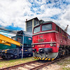 <h2>Red locomotive</h2> Trains are such great subject for photos. Don't you think?