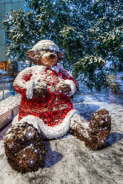 Christmas Bear