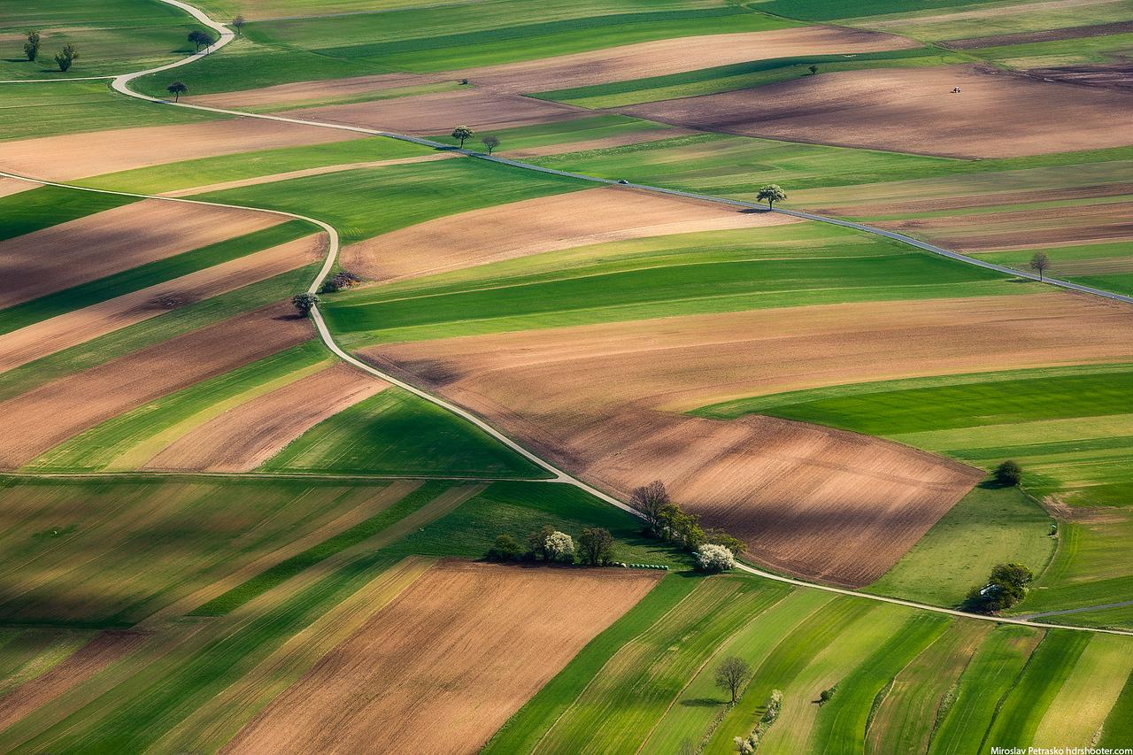 Austrian fields