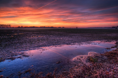 Sunset Colors  What a beautiful sunset this was :). And I was running around searching for some composition. No trees, no mountains in the distance, nothing interesting standing in front of this field. My only luck were this small puddles of water, which gave a really nice reflection, so I used them :)  HDR from three shots, taken with Canon 450D with Sigma 10-20mm lens, from a tripod.