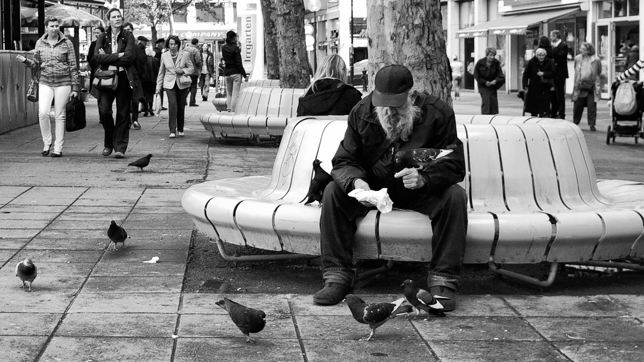 The Pigeon Man in Vienna