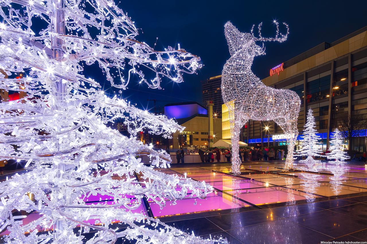 Light deer, Bratislava, Slovakia