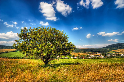 Lovely Summer Light  Still waiting for better weather. And just to remember how it looks, here is a nice shot from summer :)  HDR from three shots, taken with Canon 450D with Sigma 10-20mm lens, from a tripod.