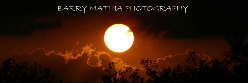 HEADER BARRY MATHIA PHOTOGRAPHY1