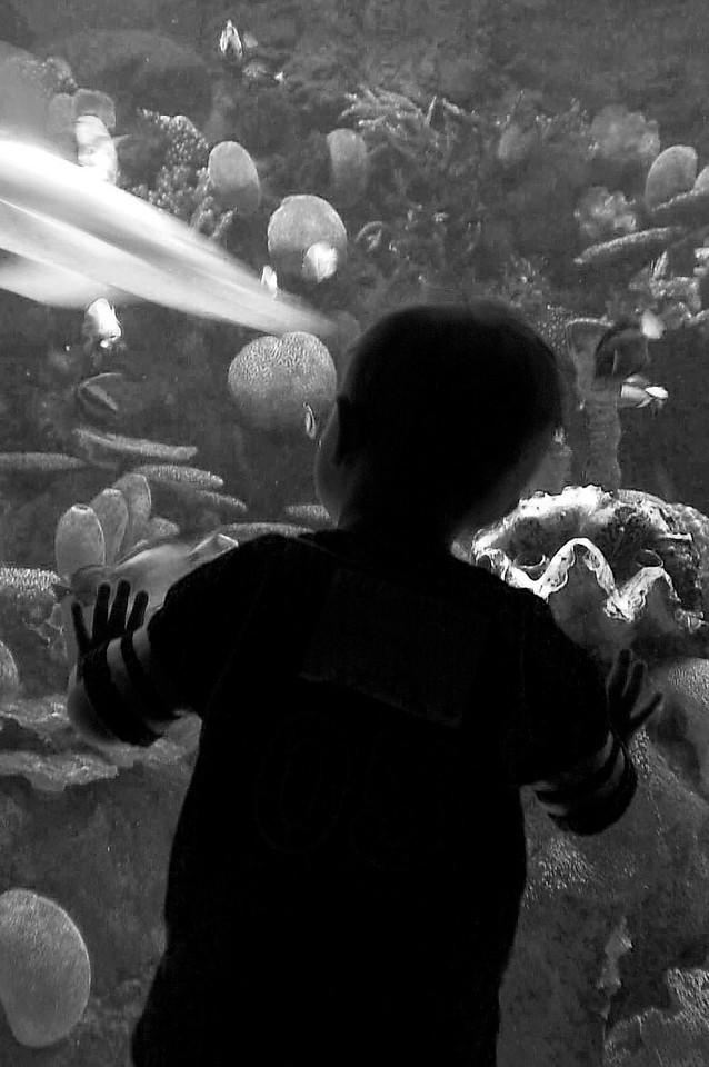 Columbus Aquarium.
