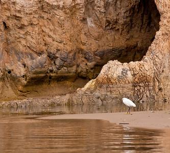 Goleta Beach Ca.
