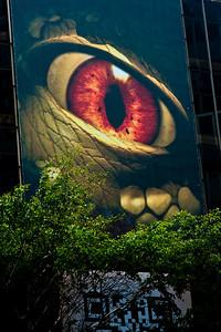 NYC May 14 2010