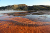 Thermophiles at Yellowstone's Grand Prismatic Spring.