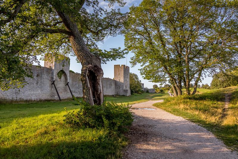 Visby's wall - east side II