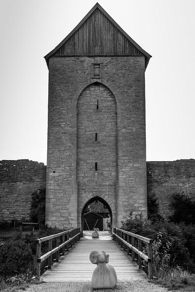Dalman's gate