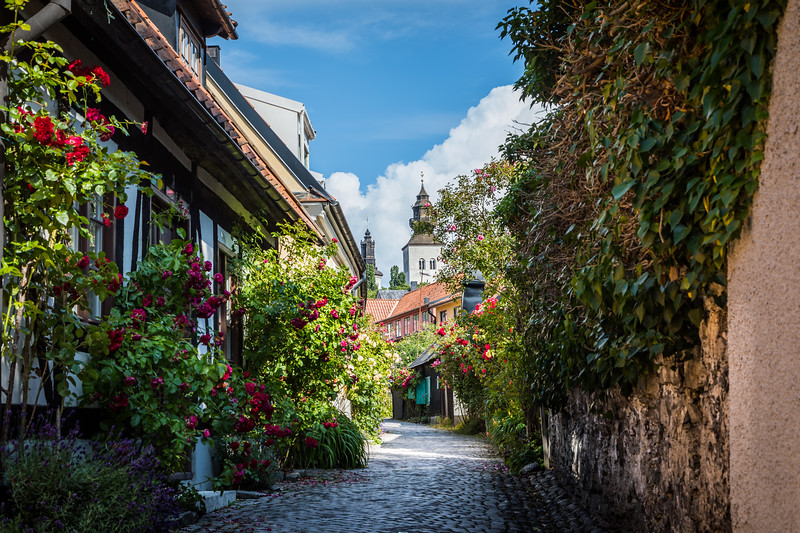 Flowered Visby's alleys
