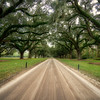 Boone Hall Country Road