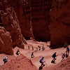Bryce Canyon_4378
