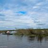 Kayak through the sawgrass prairie.