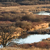 Pheasant Branch Conservancy, Middleton