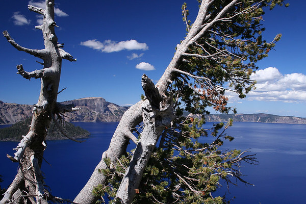 Crater Lake, OR. August 2006
