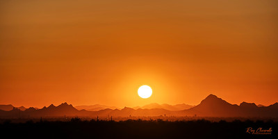 Saguaro National Park - East Tucson, Arizona