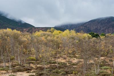 Mission Trails Regional Park - 3