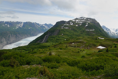 Views from the top of the Alpine Ridge Trail in Kachemak Bay State Park are amazing.  The Grewink Glacier is seen on the upper left of this image.  From this ridge, you can turn and see the glacier's terminus and the drainage back to the ocean.  The hike up to the top of Alpine Ridge is strenuous and overgrown.  But, the 2.5 mile hike (straight up the ridge with little switchbacks) is well worth it.