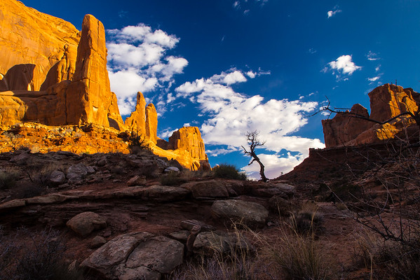 """Late afternoon on the gorgeous """"Park Avenue"""" trail in Arches National Park."""