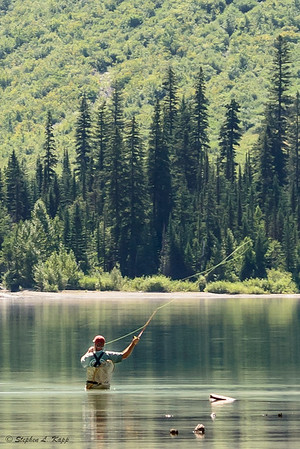 Fly Fisherman at Avalanche Lake_Crop-2