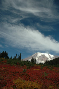 Mount Rainier in the fall! The brush turns a bright red as summer ends and the air gets colder. This view is just below Panorama Point, near Paradise.