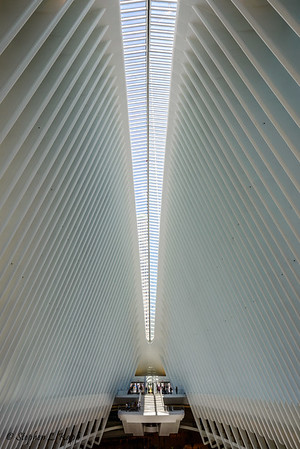 Inside the Oculus over the World Trade Center Transportation Hub