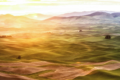Hazy golden sunrise view of rolling Palouse hills