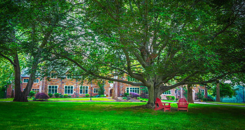 The Lawn at St. Andrew's School