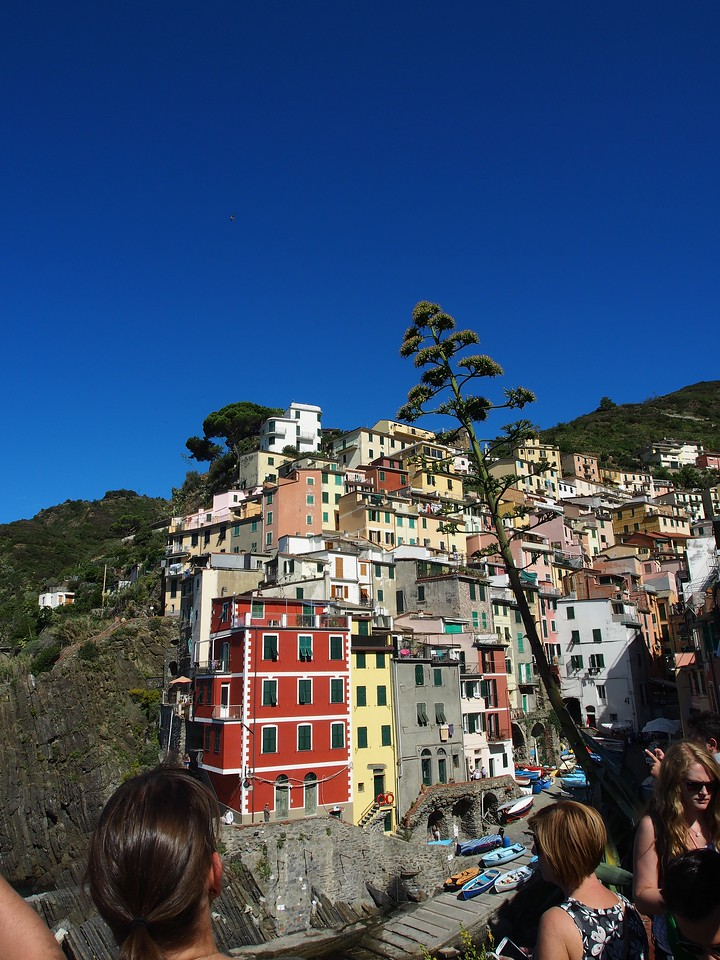 Riomaggiore; on the trail down to the water to catch the ferry.