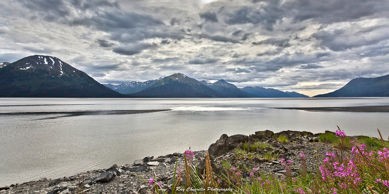 Cook Inlet - Turnagain Arm