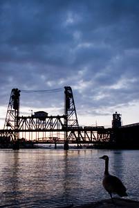 Goose Goose Bridge