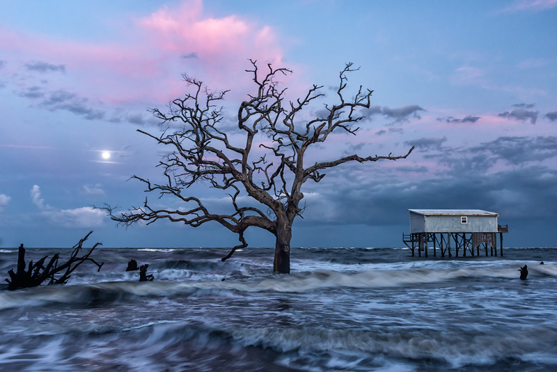 """""""Little Blue"""" Last Cabin Standing, Hunting Island State Park, SC"""