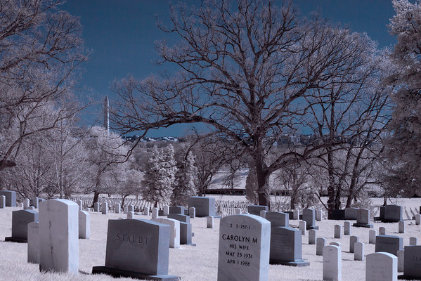 Shot with IR converted 20D at Arlington National Cemetery