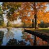 Fall colors, taken at Duncan Memorial Chapel in Crestwood, Kentucky